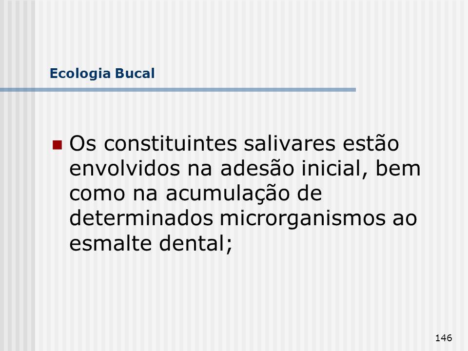146 Ecologia Bucal Os constituintes salivares estão envolvidos na adesão inicial, bem como na acumulação de determinados microrganismos ao esmalte den