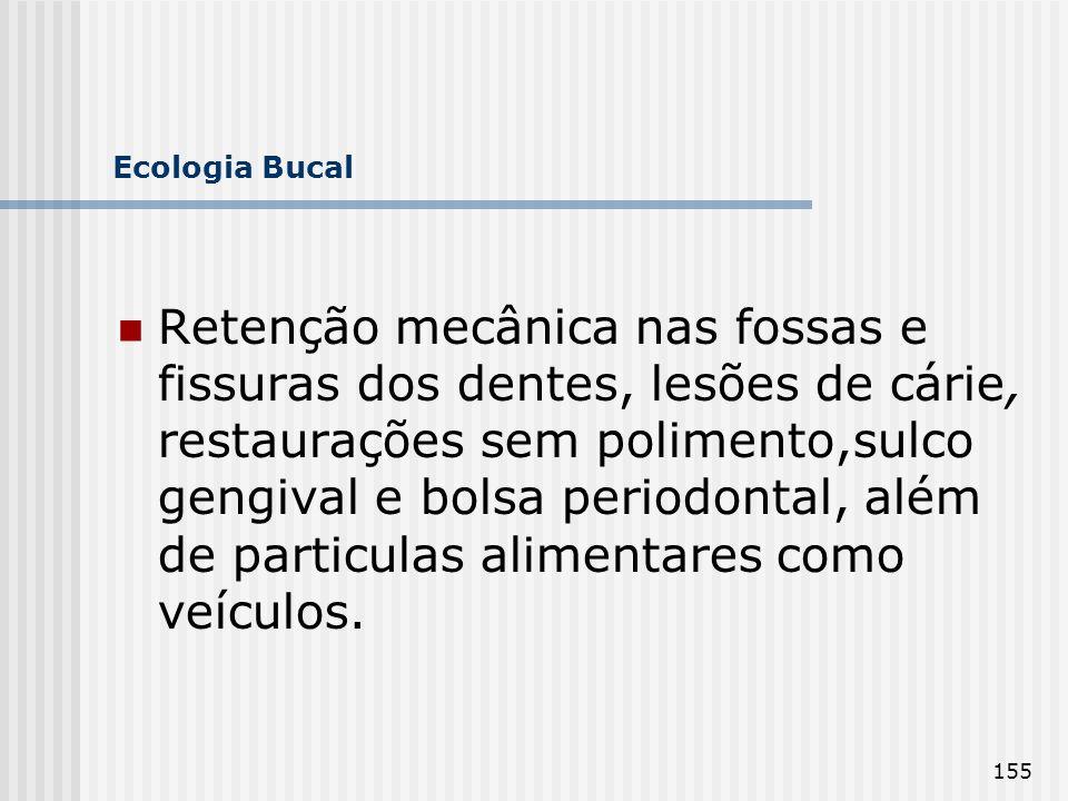 155 Ecologia Bucal Retenção mecânica nas fossas e fissuras dos dentes, lesões de cárie, restaurações sem polimento,sulco gengival e bolsa periodontal,