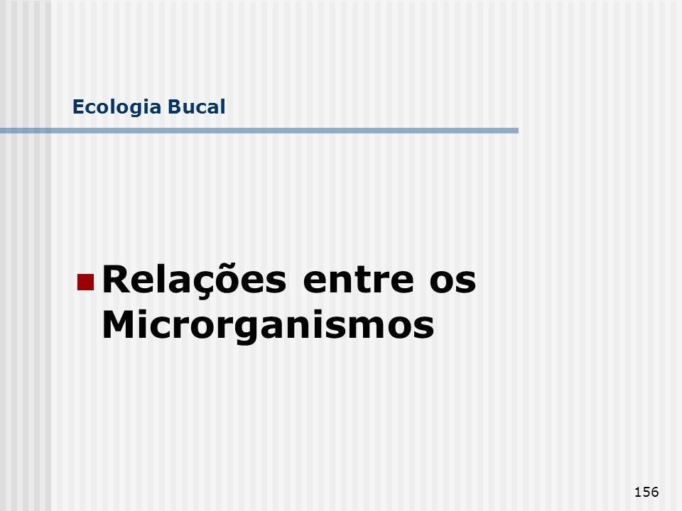 156 Ecologia Bucal Relações entre os Microrganismos