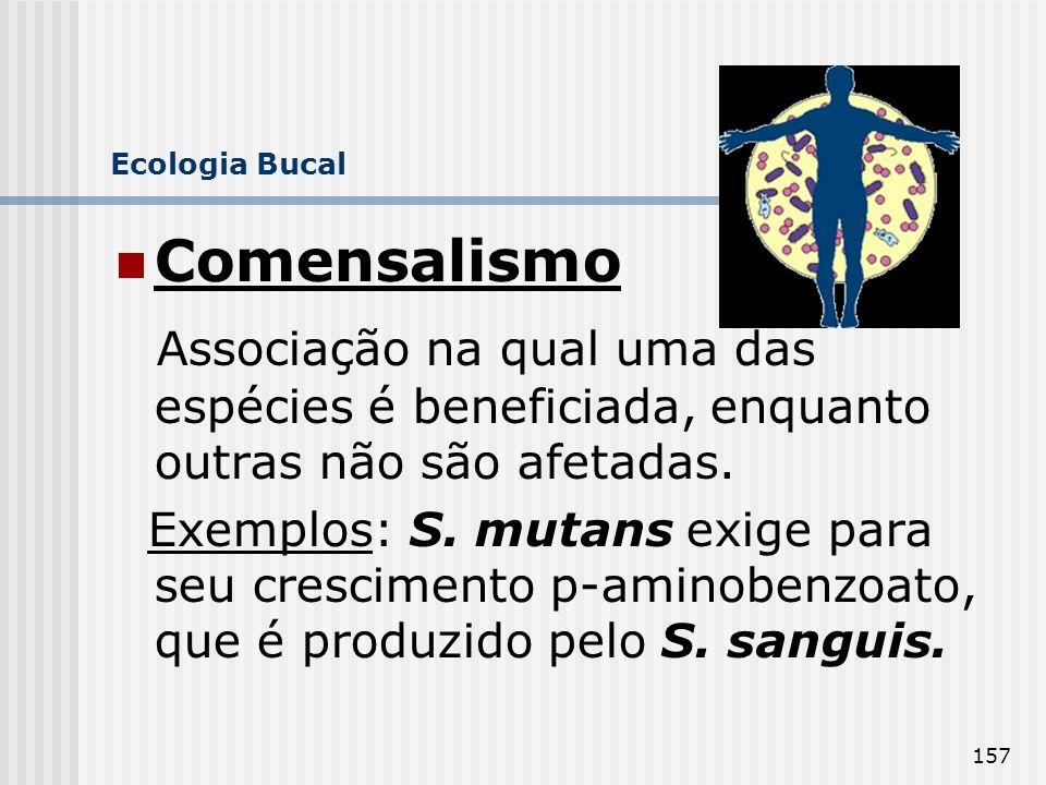 157 Ecologia Bucal Comensalismo Associação na qual uma das espécies é beneficiada, enquanto outras não são afetadas. Exemplos: S. mutans exige para se