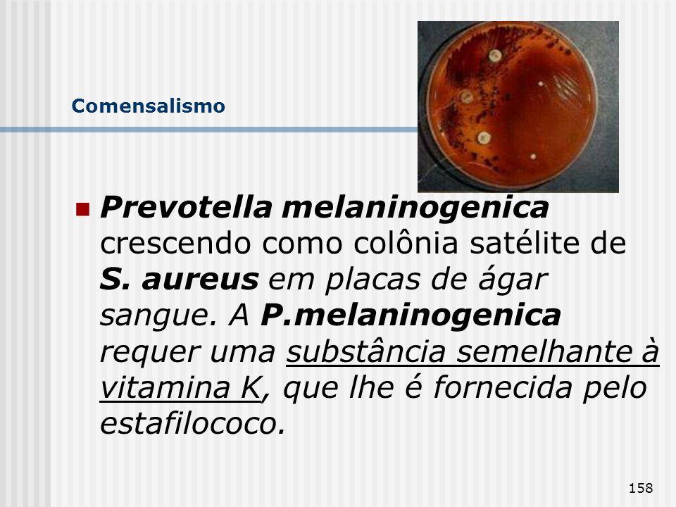 158 Comensalismo Prevotella melaninogenica crescendo como colônia satélite de S. aureus em placas de ágar sangue. A P.melaninogenica requer uma substâ