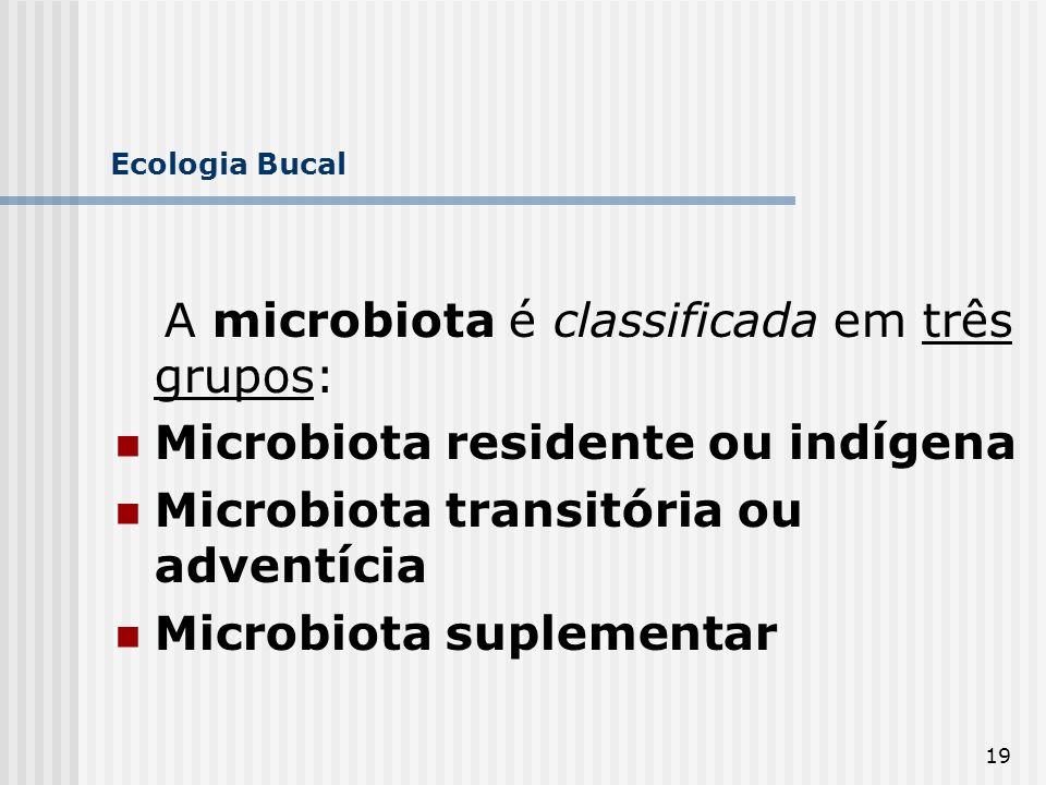 19 Ecologia Bucal A microbiota é classificada em três grupos: Microbiota residente ou indígena Microbiota transitória ou adventícia Microbiota supleme