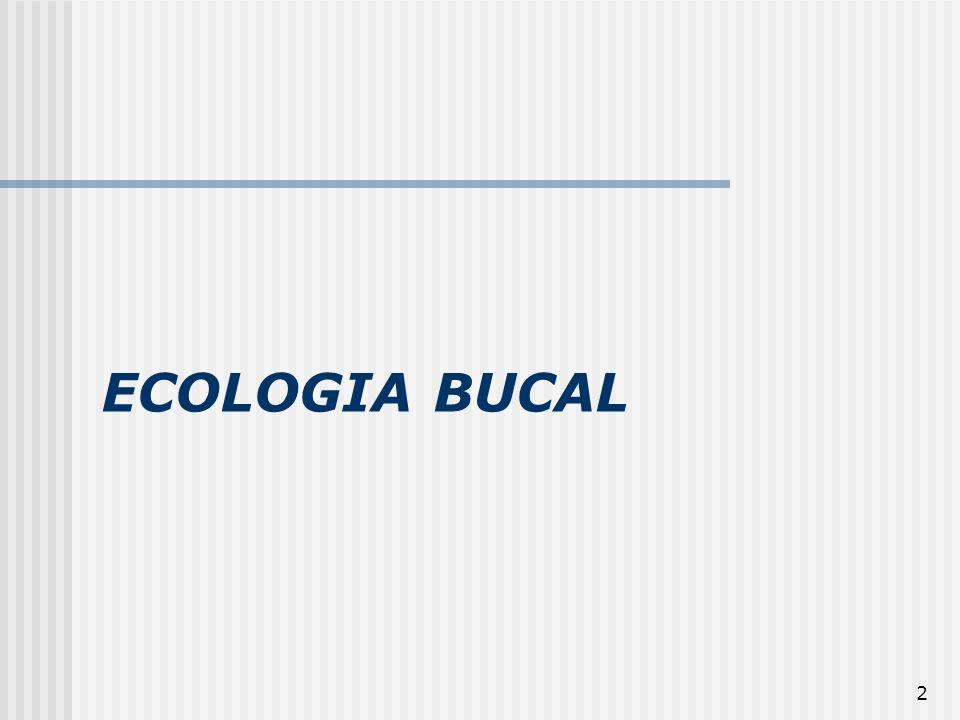13 Ecologia Bucal Os ecossistemas microbianos são inicialmente colonizados por um número limitado de espécies, porque o habitat apresenta determinadas condições que seletivamente as favorece.