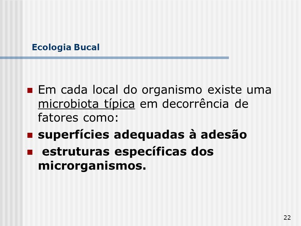 22 Ecologia Bucal Em cada local do organismo existe uma microbiota típica em decorrência de fatores como: superfícies adequadas à adesão estruturas es
