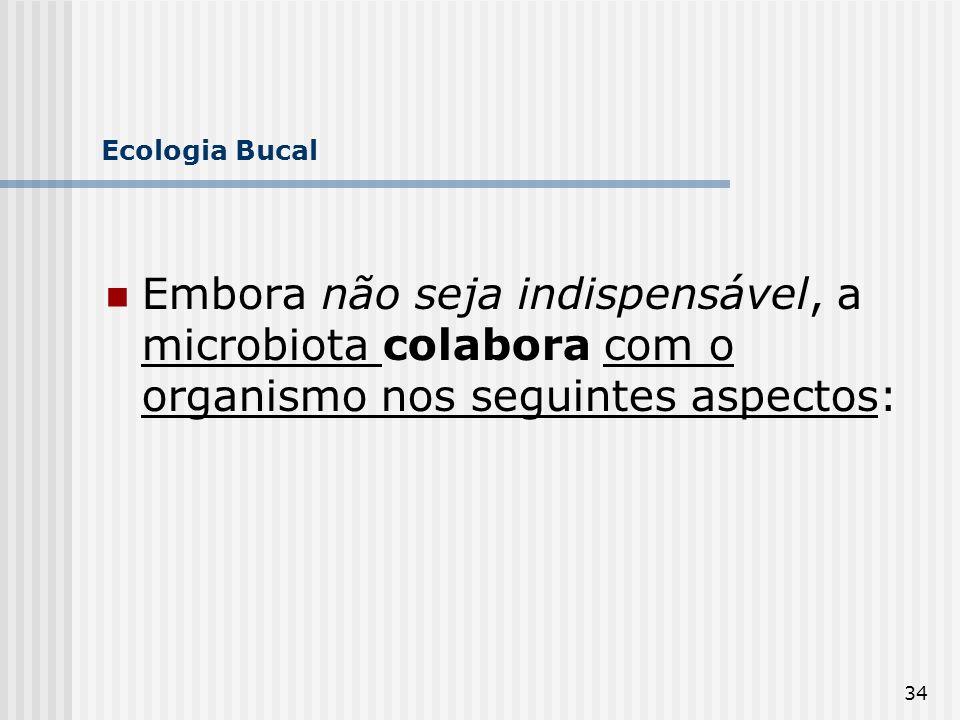 34 Ecologia Bucal Embora não seja indispensável, a microbiota colabora com o organismo nos seguintes aspectos: