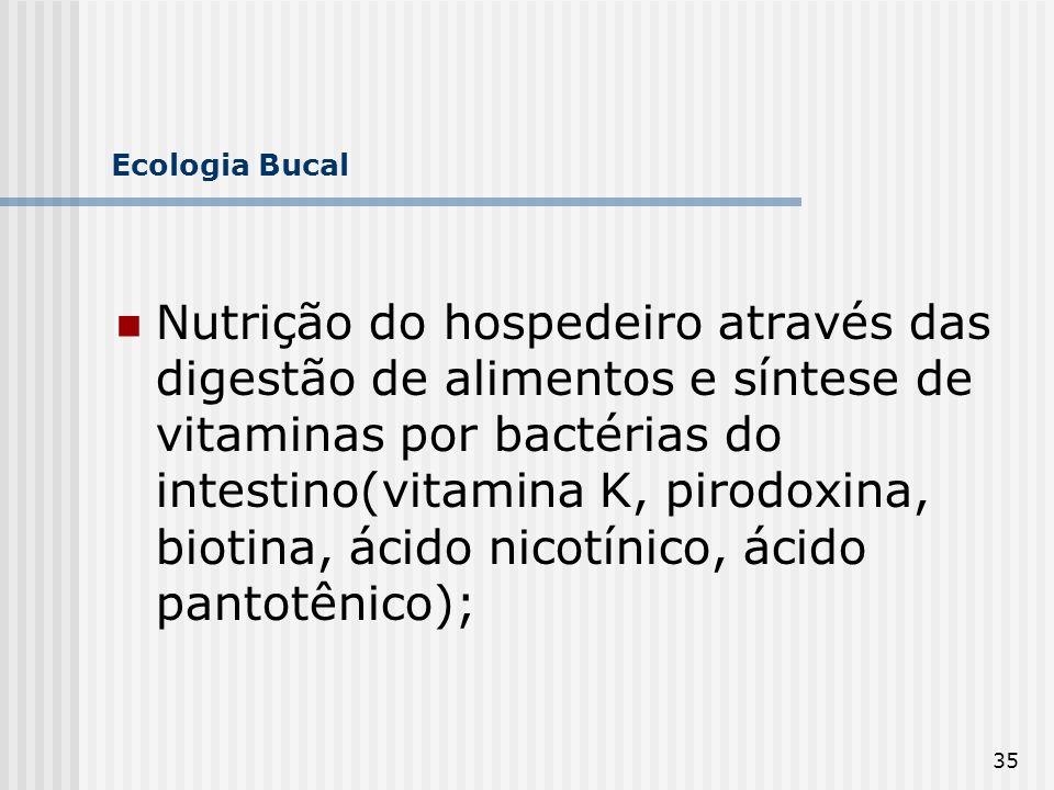 35 Ecologia Bucal Nutrição do hospedeiro através das digestão de alimentos e síntese de vitaminas por bactérias do intestino(vitamina K, pirodoxina, b