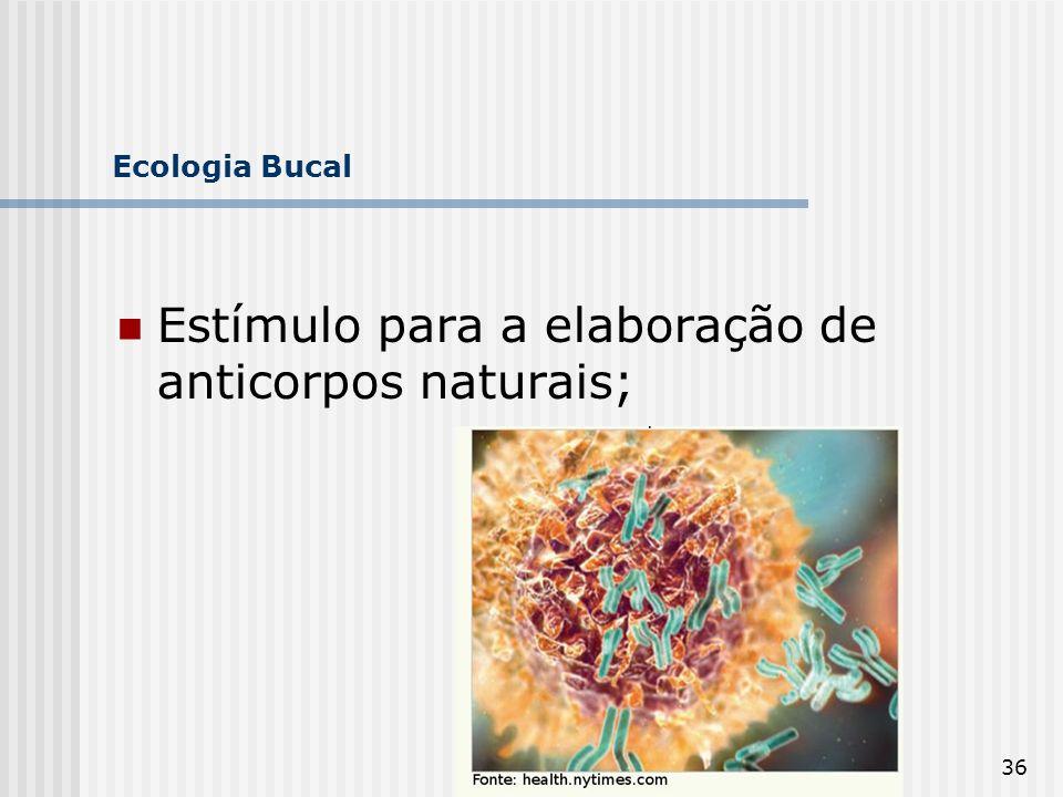 36 Ecologia Bucal Estímulo para a elaboração de anticorpos naturais;