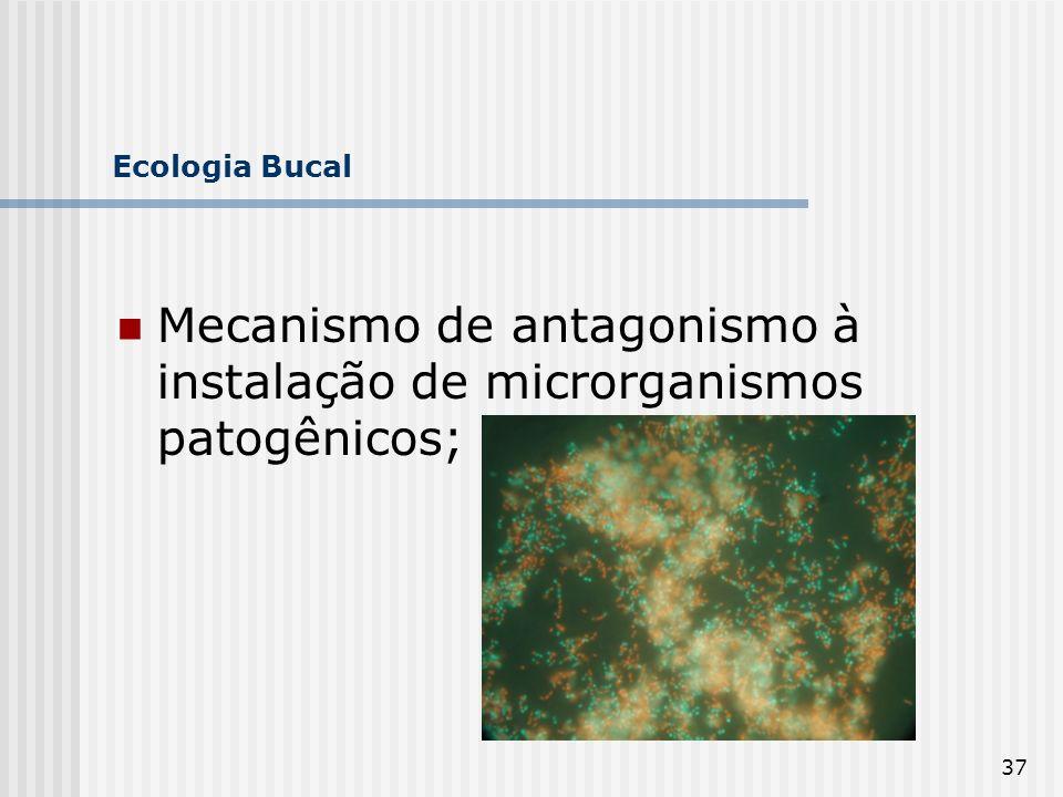37 Ecologia Bucal Mecanismo de antagonismo à instalação de microrganismos patogênicos;