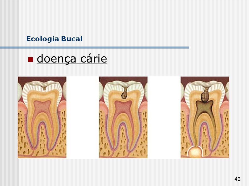 43 Ecologia Bucal doença cárie