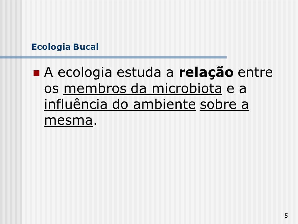 5 Ecologia Bucal A ecologia estuda a relação entre os membros da microbiota e a influência do ambiente sobre a mesma.