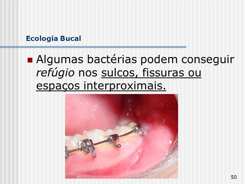 50 Ecologia Bucal Algumas bactérias podem conseguir refúgio nos sulcos, fissuras ou espaços interproximais.