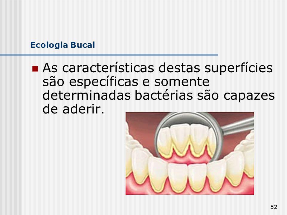 52 Ecologia Bucal As características destas superfícies são específicas e somente determinadas bactérias são capazes de aderir.