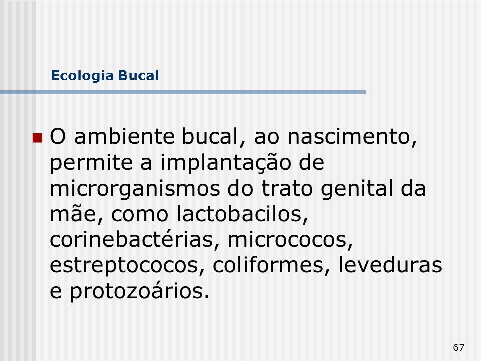 67 Ecologia Bucal O ambiente bucal, ao nascimento, permite a implantação de microrganismos do trato genital da mãe, como lactobacilos, corinebactérias