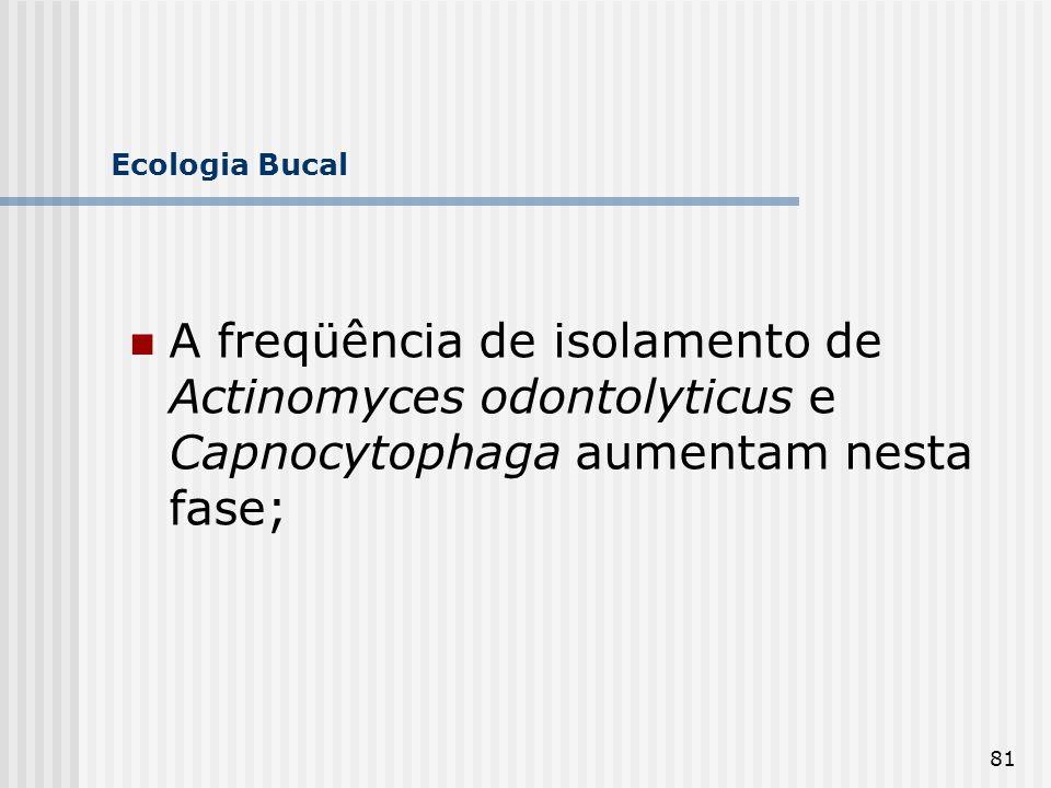 81 Ecologia Bucal A freqüência de isolamento de Actinomyces odontolyticus e Capnocytophaga aumentam nesta fase;