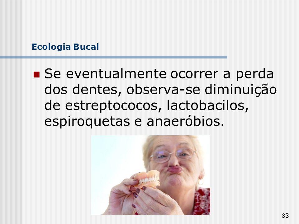 83 Ecologia Bucal Se eventualmente ocorrer a perda dos dentes, observa-se diminuição de estreptococos, lactobacilos, espiroquetas e anaeróbios.