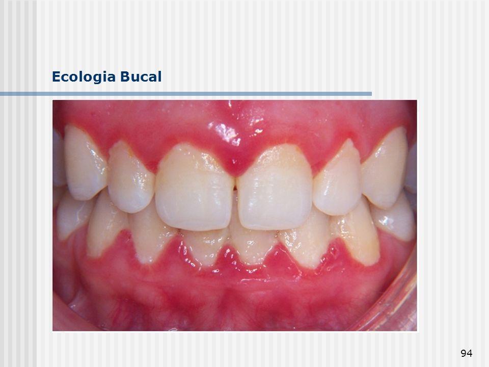 94 Ecologia Bucal