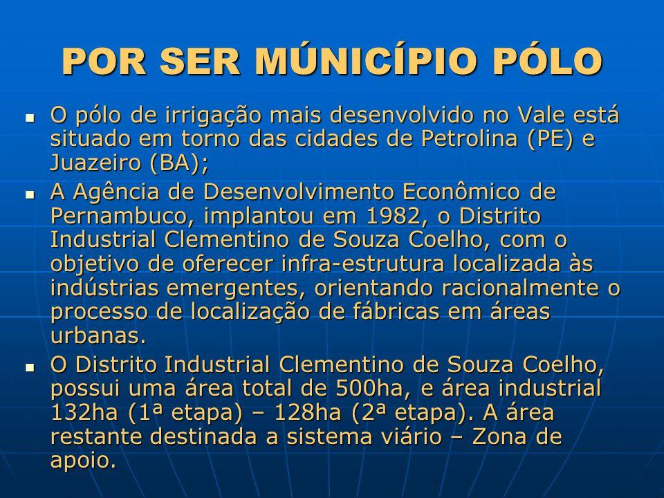 POR SER MÚNICÍPIO PÓLO O pólo de irrigação mais desenvolvido no Vale está situado em torno das cidades de Petrolina (PE) e Juazeiro (BA); O pólo de ir