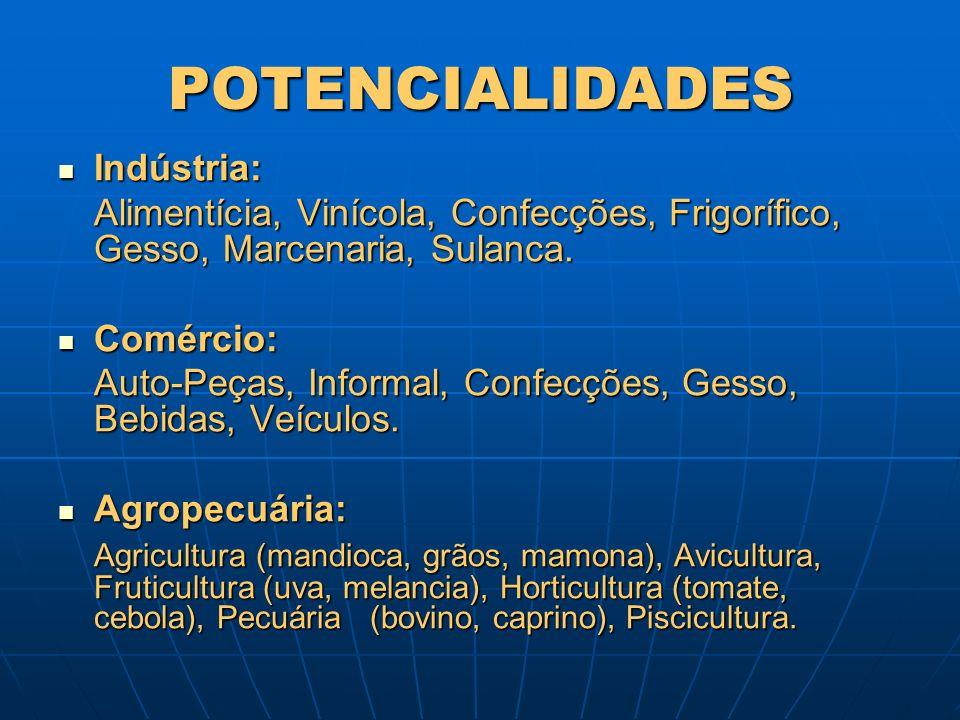 POTENCIALIDADES Indústria: Indústria: Alimentícia, Vinícola, Confecções, Frigorífico, Gesso, Marcenaria, Sulanca. Comércio: Comércio: Auto-Peças, Info