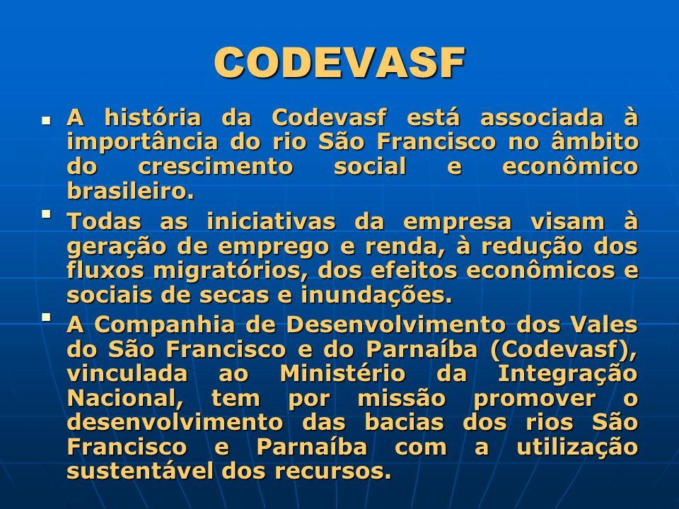 A história da Codevasf está associada à importância do rio São Francisco no âmbito do crescimento social e econômico brasileiro. A história da Codevas