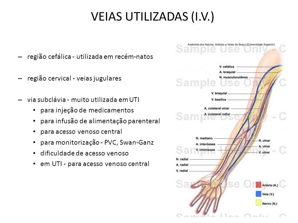 – região cefálica - utilizada em recém-natos – região cervical - veias jugulares – via subclávia - muito utilizada em UTI para injeção de medicamentos