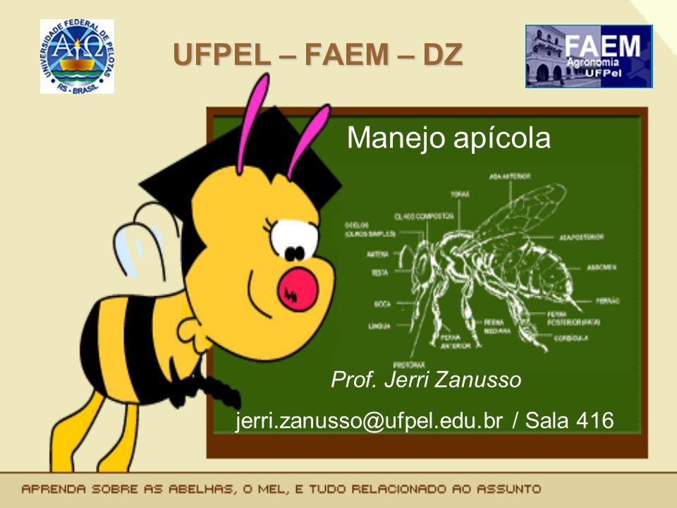 UFPEL – FAEM – DZ Manejo apícola Prof. Jerri Zanusso jerri.zanusso@ufpel.edu.br / Sala 416