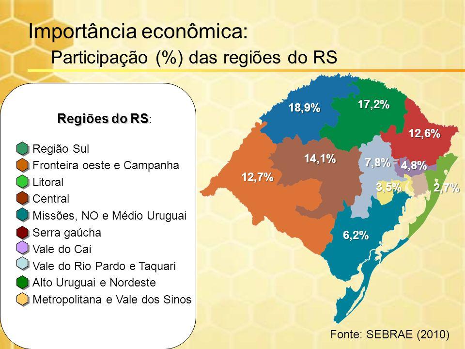 Importância econômica: Participação (%) das regiões do RS 12,7% 18,9% 17,2% 12,6% 14,1% 6,2% 7,8% 2,7% 3,5% 4,8% Fonte: SEBRAE (2010) Regiões do RS Re