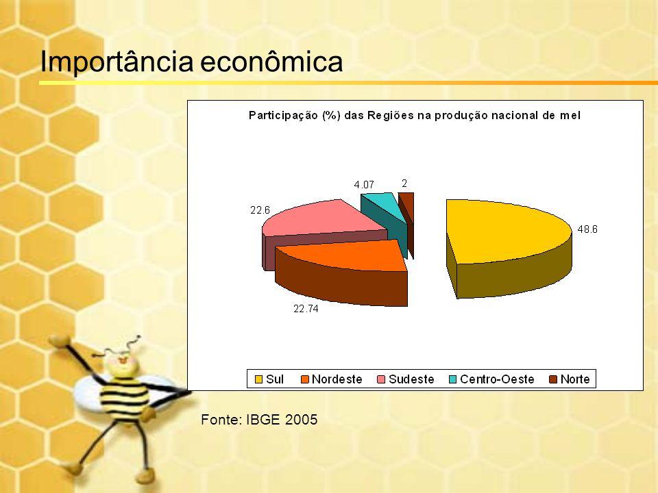 Importância econômica Fonte: IBGE 2005