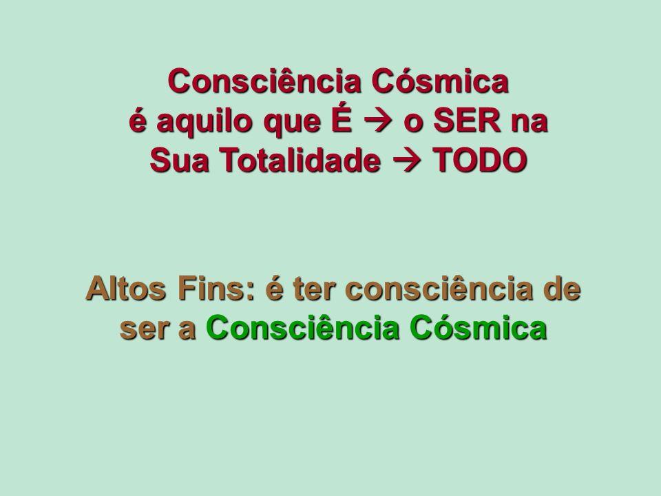 Altos Fins: é ter consciência de ser a Consciência Cósmica Consciência Cósmica é aquilo que É o SER na Sua Totalidade TODO