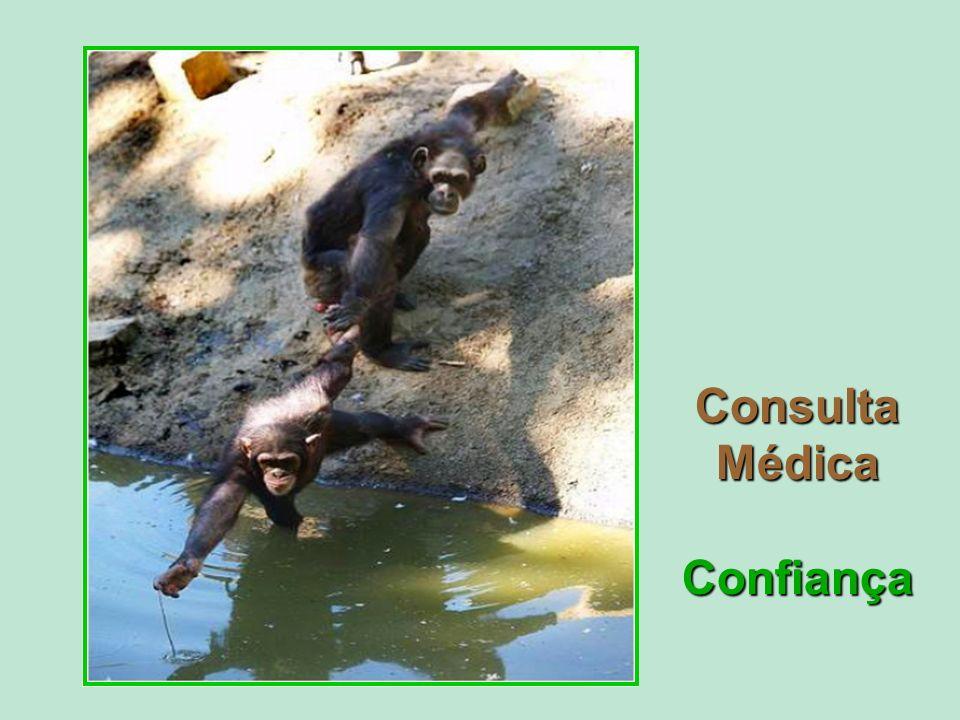 Consulta Médica Confiança