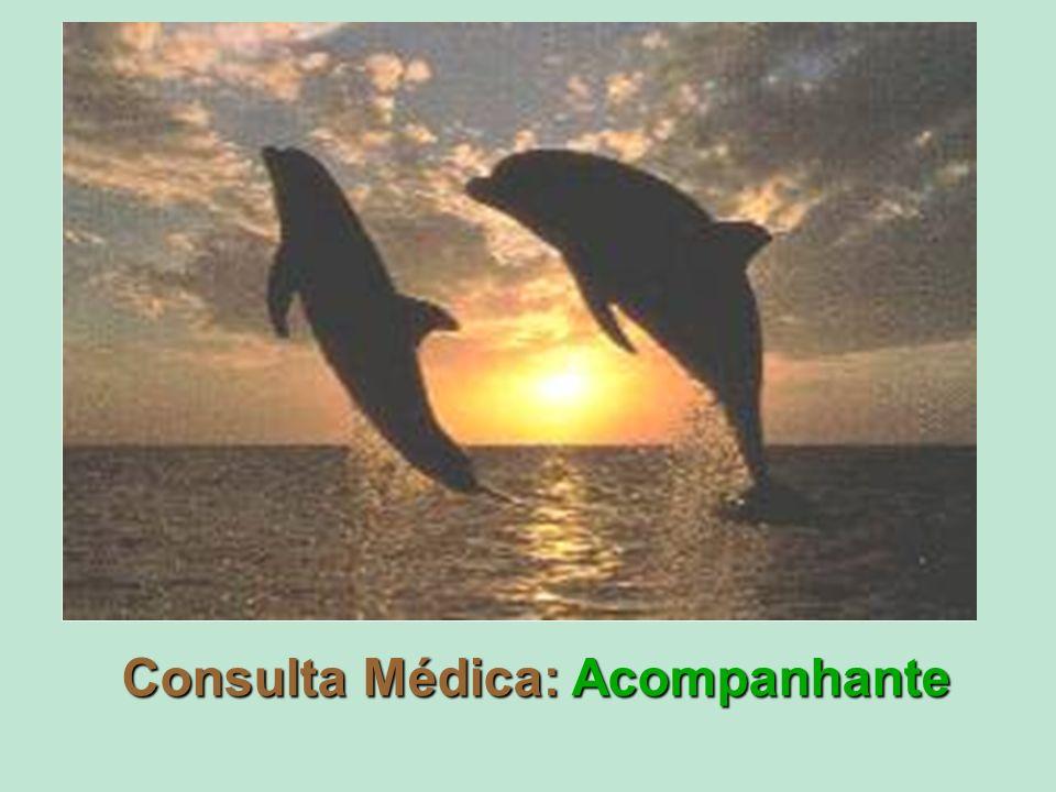 Consulta Médica: Acompanhante