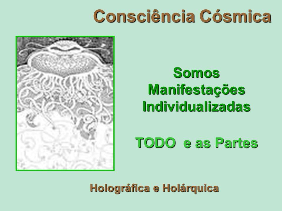 Consciência Cósmica Somos Manifestações Individualizadas TODO e as Partes Holográfica e Holárquica