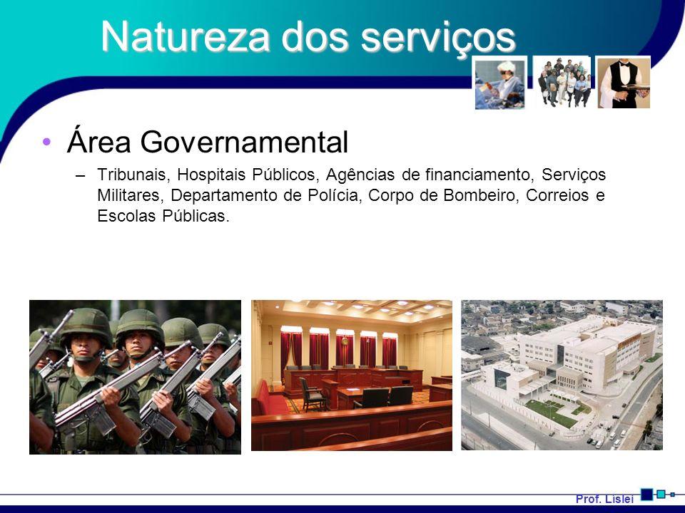 Prof. Líslei Natureza dos serviços Área Governamental –Tribunais, Hospitais Públicos, Agências de financiamento, Serviços Militares, Departamento de P