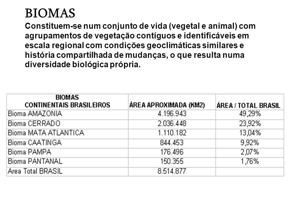 Estudo do Ibama delimitou 78 eco-regiões em todo o Brasil, que são unidades básicas para a conservação da biodiversidade, seguido a lógica dos seres vivos e a composição das paisagens