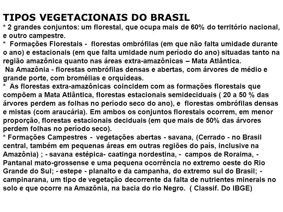 TIPOS VEGETACIONAIS DO BRASIL * 2 grandes conjuntos: um florestal, que ocupa mais de 60% do território nacional, e outro campestre.