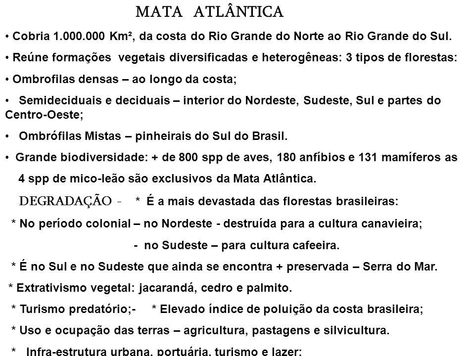 Flora: - vegetações de três regiões: amazônica, cerrado e chaco (paraguaio e argentino). Durante a seca que coincide com o inverno, os campos ficam am