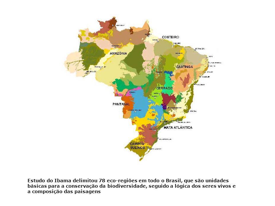 * Entre a floresta Amazônica e a caatinga: * Estados do Maranhão e do Piauí e norte do Tocantins; No oeste, (clima equatorial da Amazônia, + úmida é f