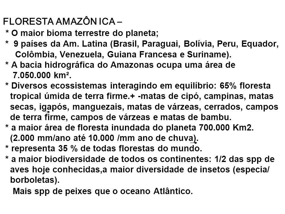 FLORESTA AMAZÔN ICA – * O maior bioma terrestre do planeta; * 9 países da Am.