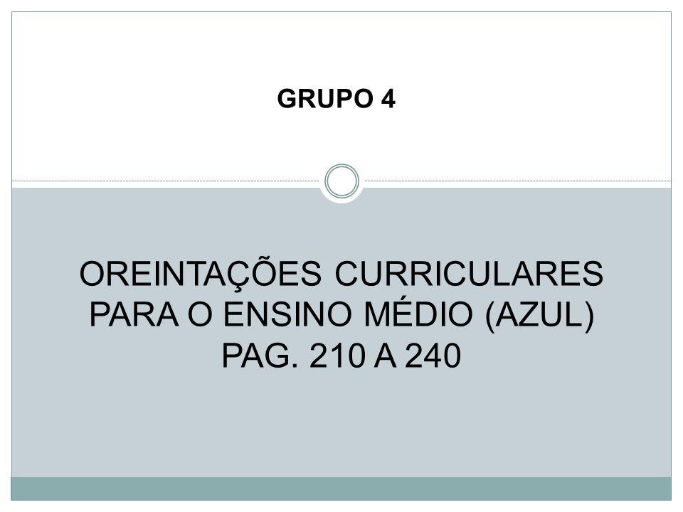 OREINTAÇÕES CURRICULARES PARA O ENSINO MÉDIO (AZUL) PAG. 210 A 240 GRUPO 4