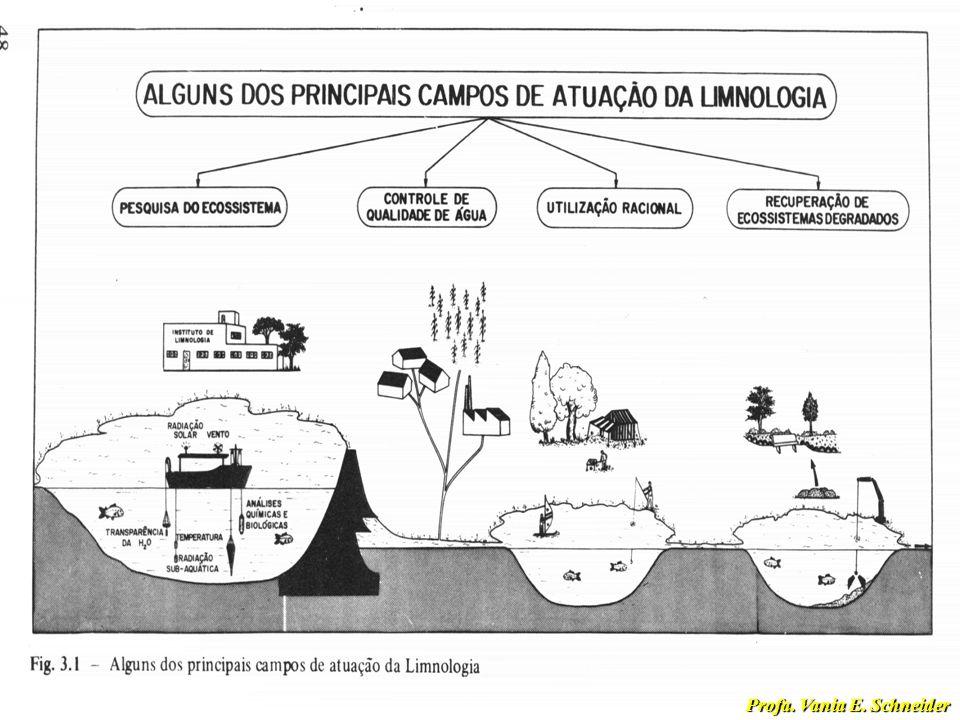 Limnologia na Sociedade Moderna Ciência que está diretamente envolvida com a utilização racional e com a conservação dos recursos hídricos Ciência que