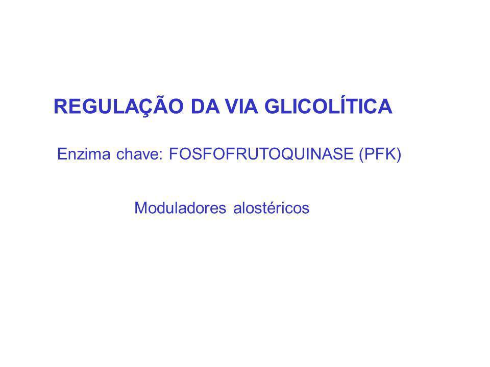 REGULAÇÃO DA VIA GLICOLÍTICA Moduladores alostéricos Enzima chave: FOSFOFRUTOQUINASE (PFK)