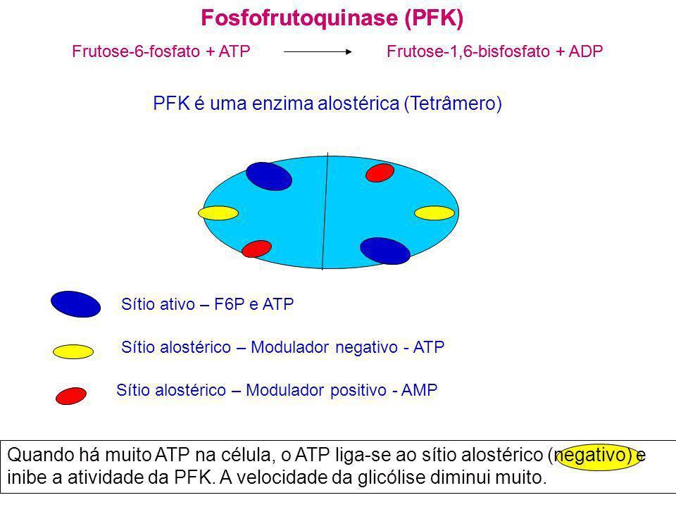 Fosfofrutoquinase (PFK) Frutose-6-fosfato + ATP Frutose-1,6-bisfosfato + ADP Fosfofrutoquinase (PFK) Frutose-6-fosfato + ATP Frutose-1,6-bisfosfato +