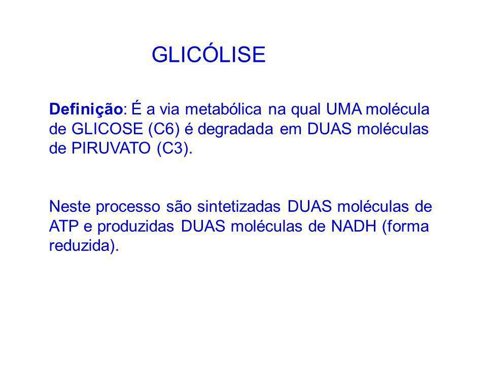 Definição: É a via metabólica na qual UMA molécula de GLICOSE (C6) é degradada em DUAS moléculas de PIRUVATO (C3). Neste processo são sintetizadas DUA