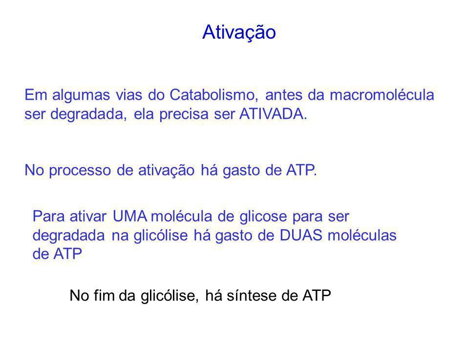Em algumas vias do Catabolismo, antes da macromolécula ser degradada, ela precisa ser ATIVADA. No processo de ativação há gasto de ATP. Para ativar UM