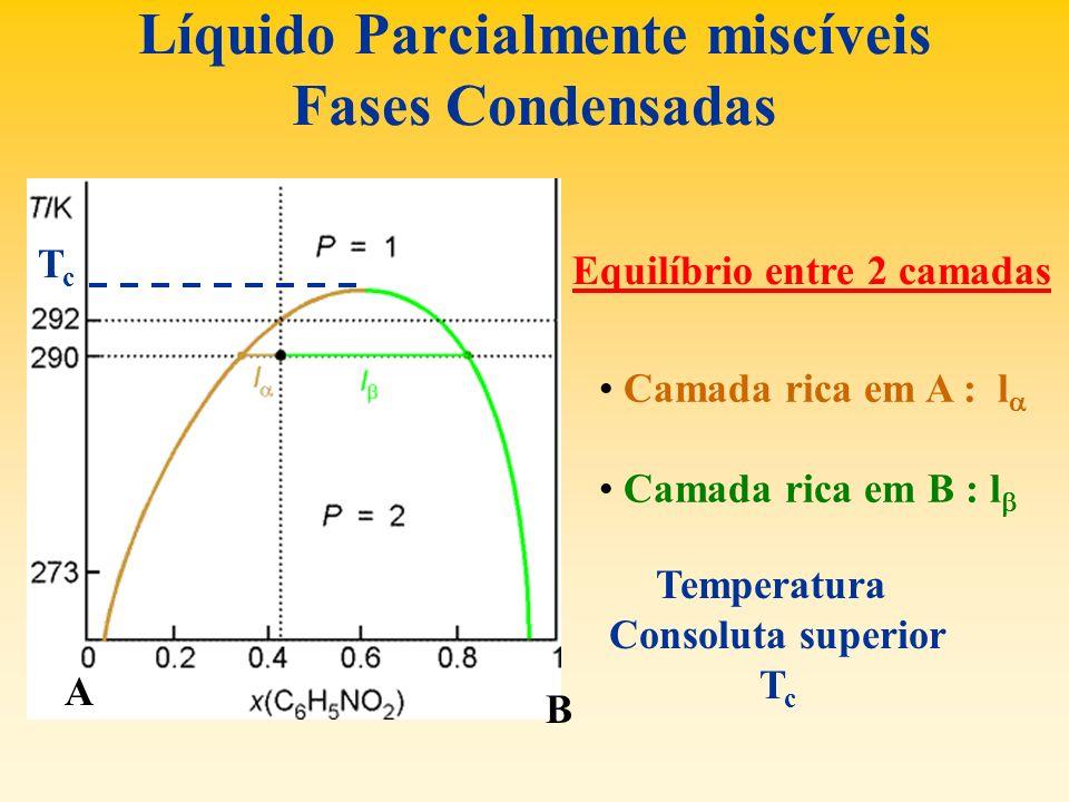 Líquido Parcialmente miscíveis Fases Condensadas A B Equilíbrio entre 2 camadas Camada rica em A : l Camada rica em B : l Temperatura Consoluta superi