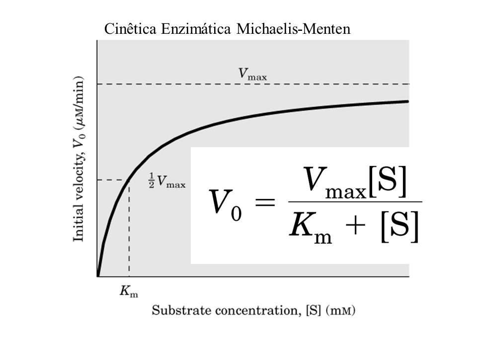 Cinêtica Enzimática Michaelis-Menten