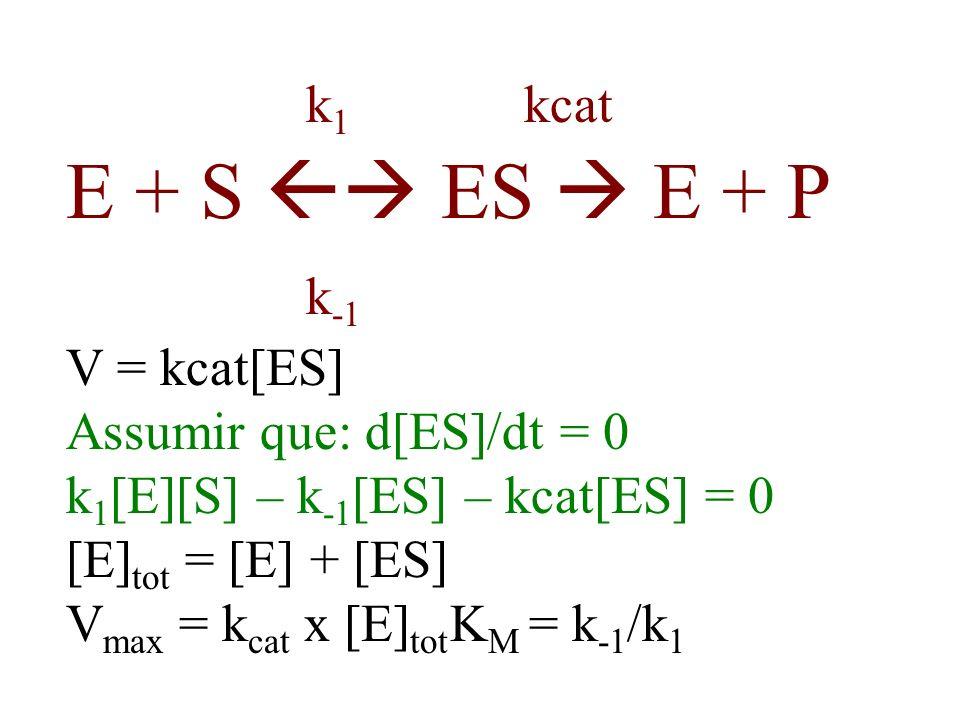 k 1 kcat E + S ES E + P k -1 V = kcat[ES] Assumir que: d[ES]/dt = 0 k 1 [E][S] – k -1 [ES] – kcat[ES] = 0 [E] tot = [E] + [ES] V max = k cat x [E] tot