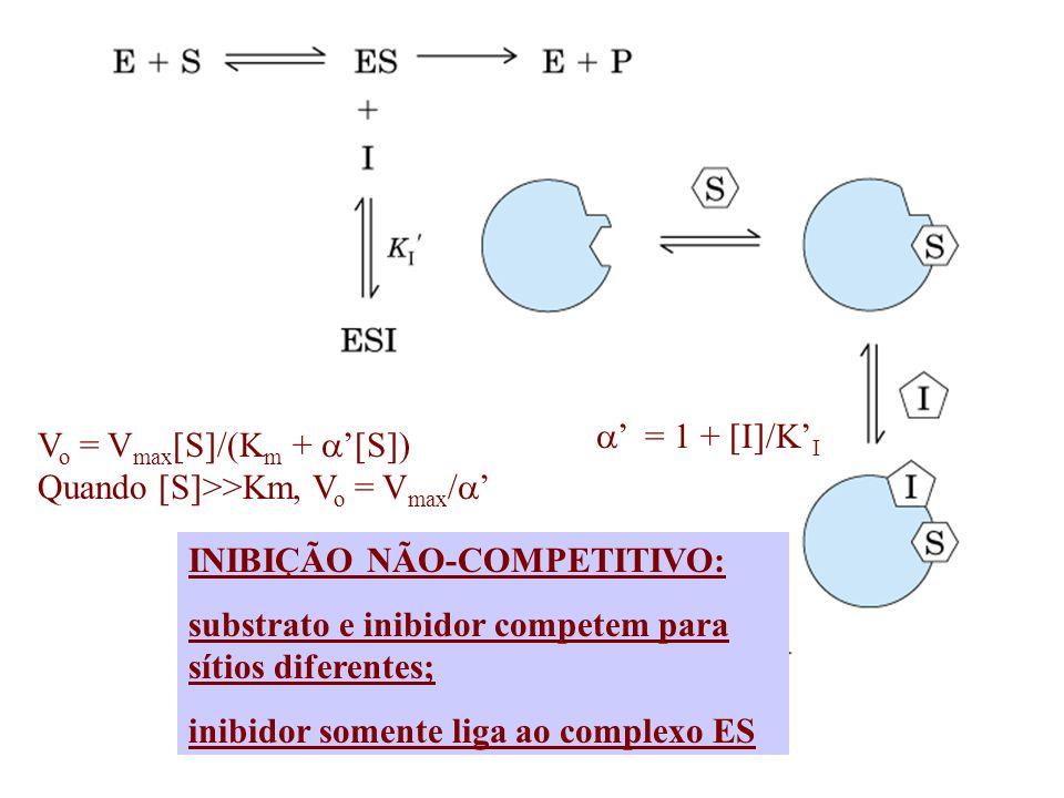 = 1 + [I]/K I V o = V max [S]/(K m + [S]) Quando [S]>>Km, V o = V max / INIBIÇÃO NÃO-COMPETITIVO: substrato e inibidor competem para sítios diferentes