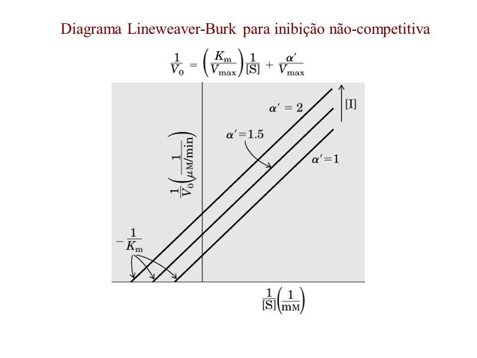 Diagrama Lineweaver-Burk para inibição não-competitiva