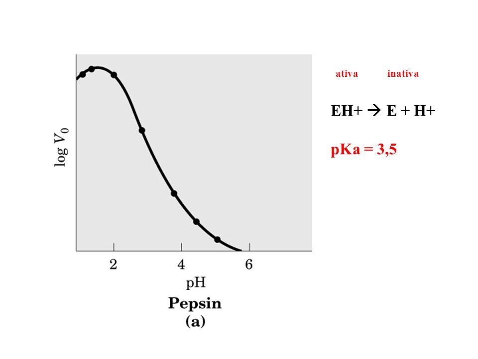 EH+ E + H+ pKa = 3,5 ativa inativa