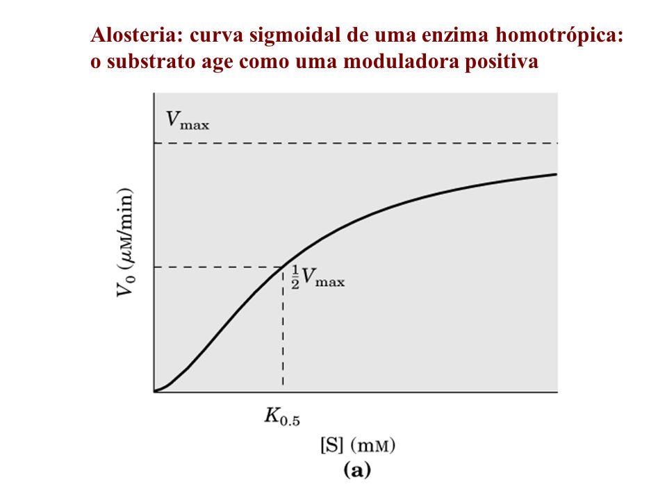 Alosteria: curva sigmoidal de uma enzima homotrópica: o substrato age como uma moduladora positiva